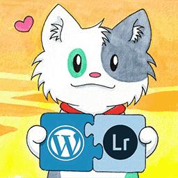 Création de Sites WordPress avec le plugin WP/LR Sync